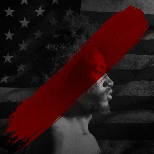 RVLTN (Chapter 1): The Divided States Of AmeriKKKa