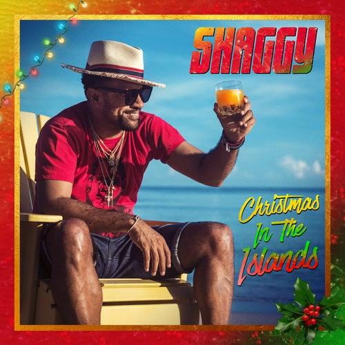 Amazing Christmas (feat. Hannah Brier)