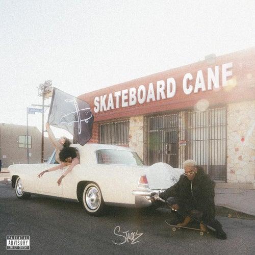 Skateboard Cane