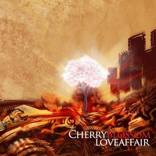 Cherry Blossom Love Affair