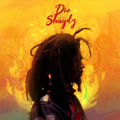 Die Without Shaydz