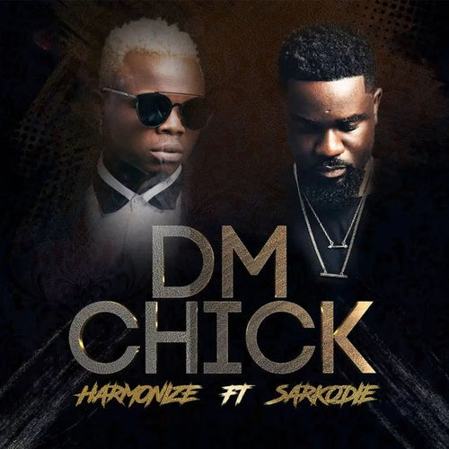 DM Chick (feat. Sarkodie)