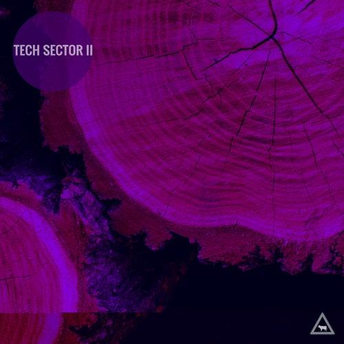 Tech Sector II