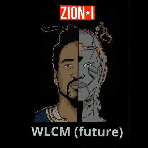 WLCM (future)