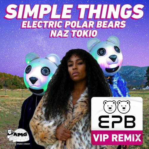 Simple Things (VIP Remix)