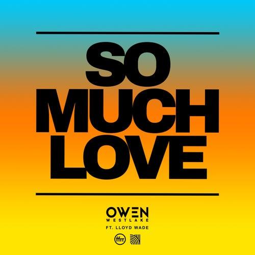 So Much Love (feat. Lloyd Wade)
