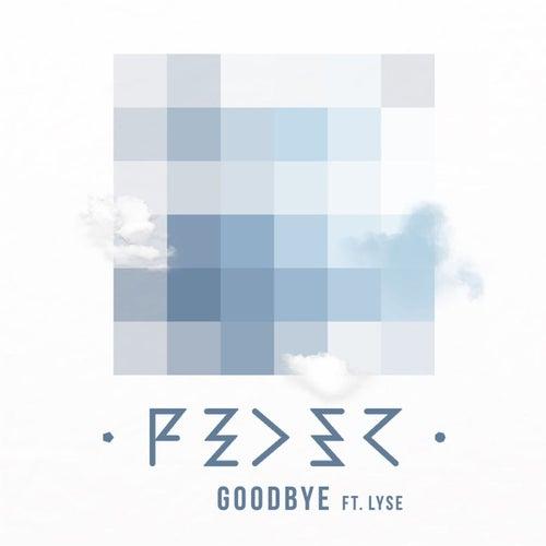 Goodbye (feat. Lyse)