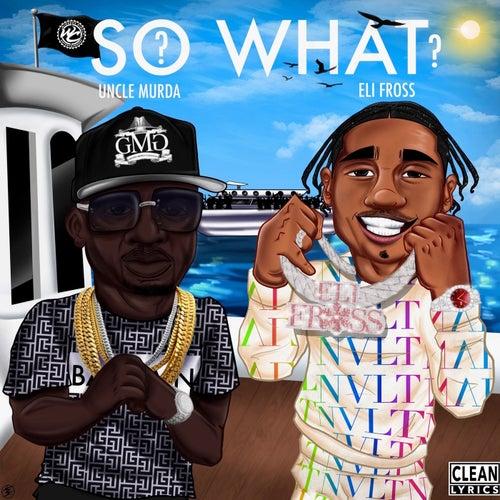 So What? (feat. Eli Fross)