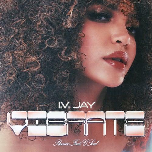 Vibrate (Remix) [feat. GSoul]