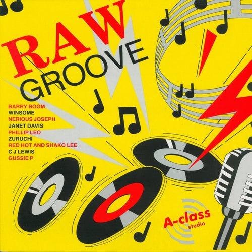 Raw Groove