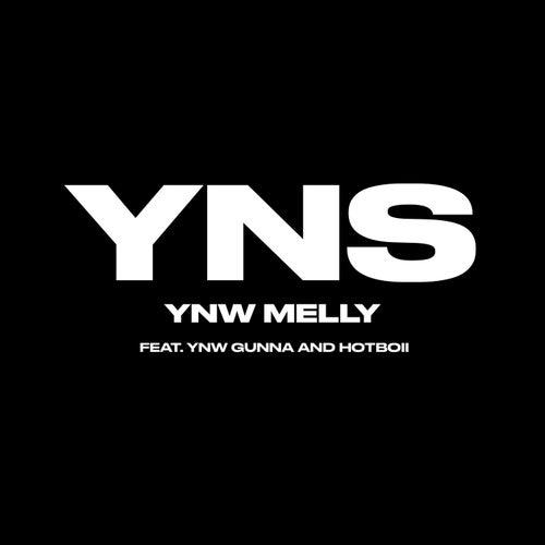 Yung Nigga Shit (feat. YNW Gunna & Hotboii)