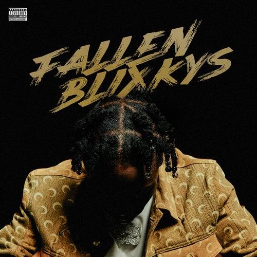 Fallen Blixkys