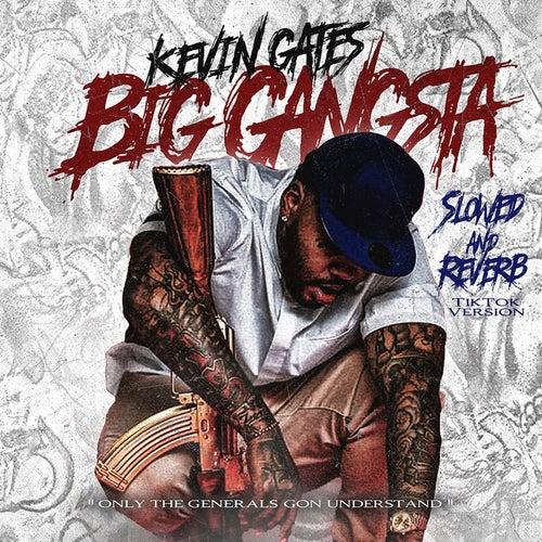 Big Gangsta (Slowed and Reverb TikTok Version)