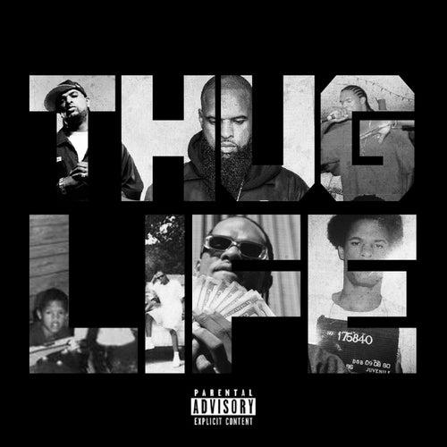 THUG LIFE (Life is Crazy)