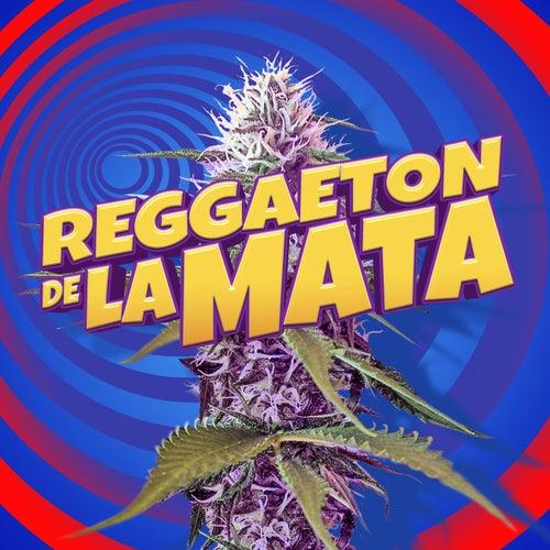 Reggaeton De La Mata