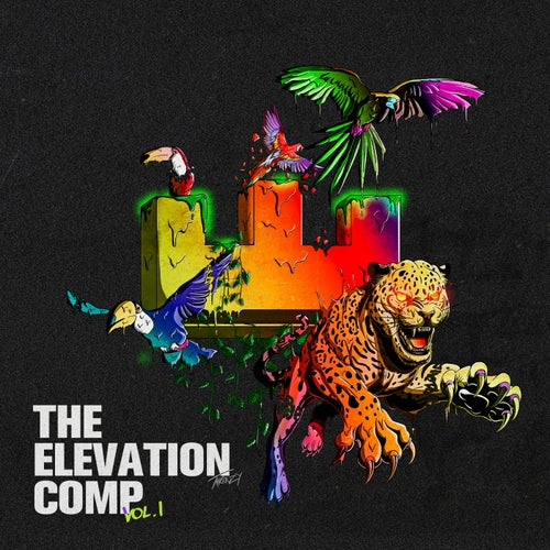 The Elevation Comp, Vol. 1