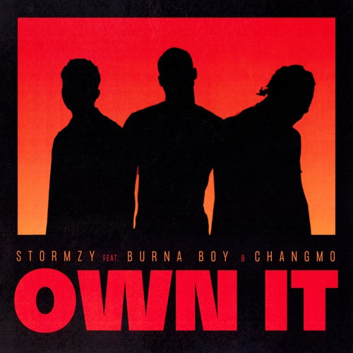 Own It (feat. Burna Boy & CHANGMO)