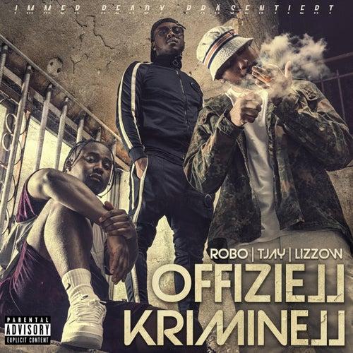 Offiziell Kriminell (feat. TJay, Lizzo)