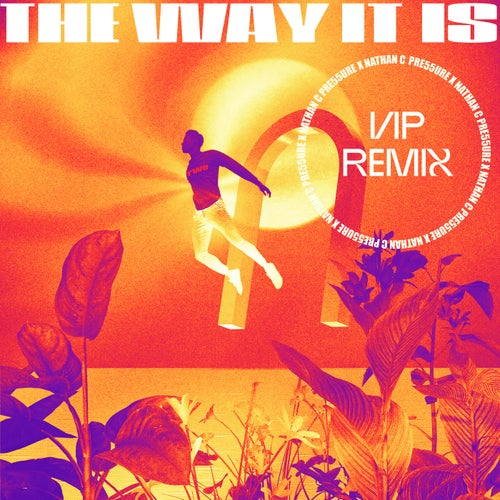 The Way It Is (VIP Mix)