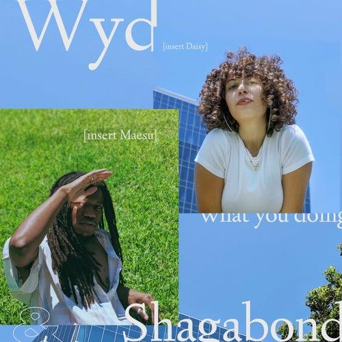 Wyd (feat. DAISY)