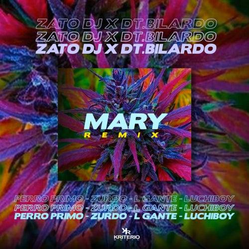 Mary Remix