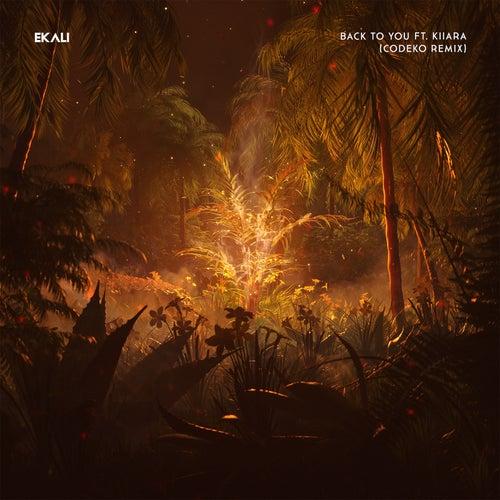 Back To You (feat. Kiiara)