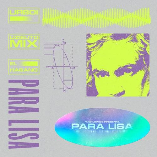 Para Lisa