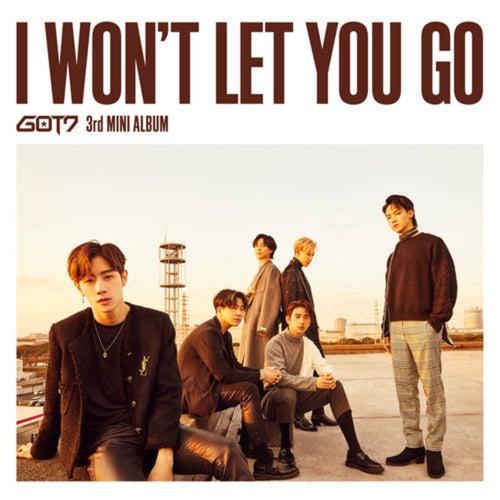 I Won't Let You Go