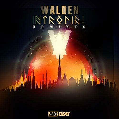 Intropial Remixes