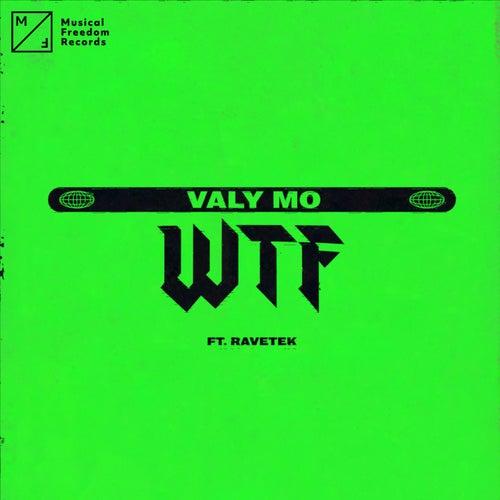 WTF (feat. Ravetek)