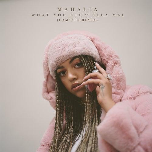 What You Did (feat. Ella Mai) [Cam'ron Remix]