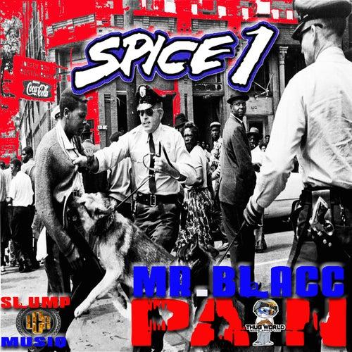 Pain (feat. Mr. Blacc & Slump Musiq)