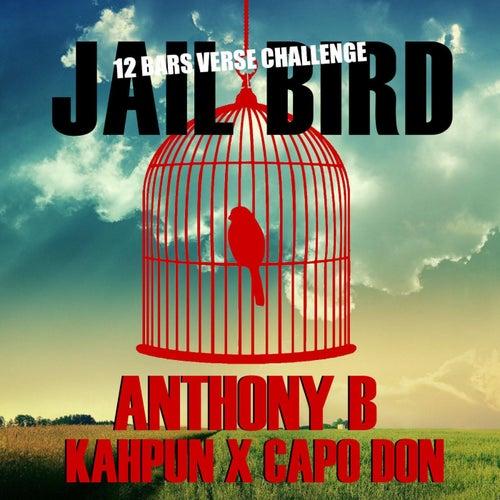 Jailbird Riddim (feat. CapoDon & Kahpun)