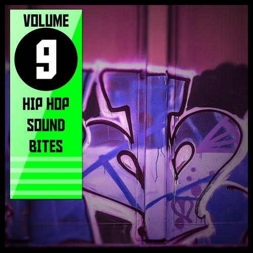 Hip Hop Sound Bites,Vol.9