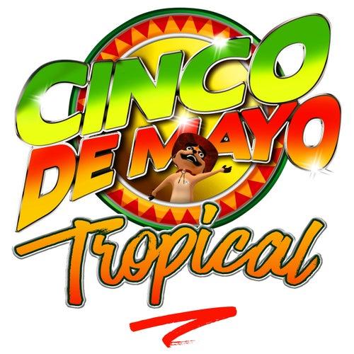 Cinco de Mayo Tropical