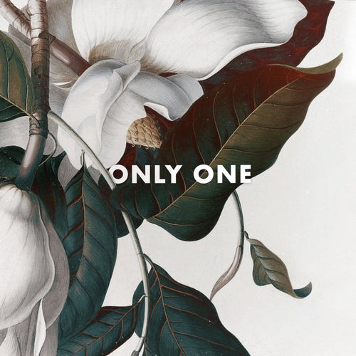 Only One (feat. B. Lewis)