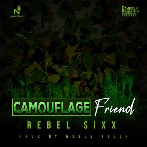 Camouflage Friend