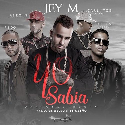Yo sabía (feat. Alexis & Fido, De La Ghetto, Carlitos Rossy)