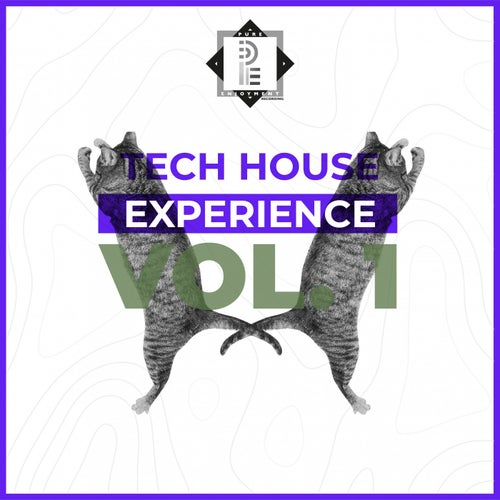 Tech House Experience (Re-Master 2021)