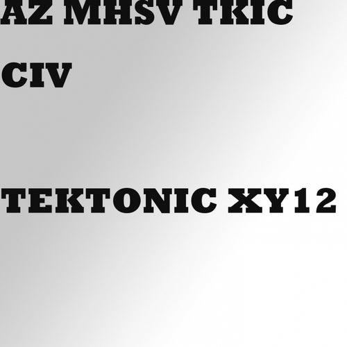 TekTonic XY12