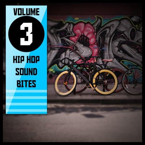Hip Hop Sound Bites,Vol.3