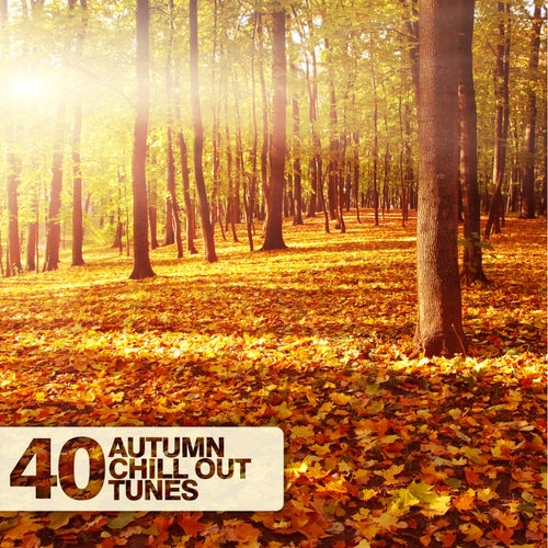 40 Autumn Chill Out Tunes